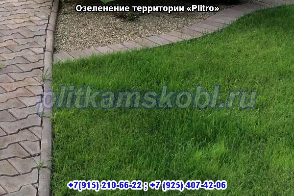 Озеленение Московская область